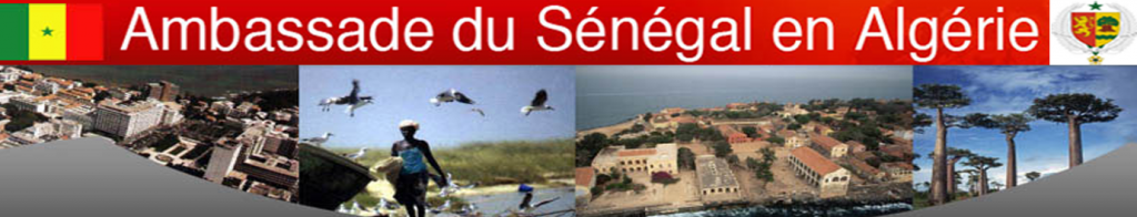 Bienvenue sur le site de l'ambassade du Sénégal en Algérie